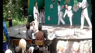 Тхеквондо Киев-Квон Демо 2012