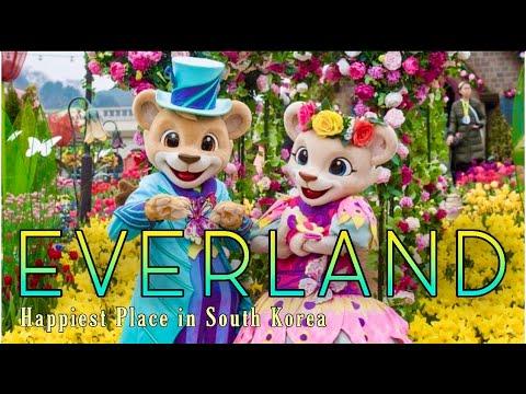 Everland Resort   Happiest place in South Korea   Walk with Ruru   Travel