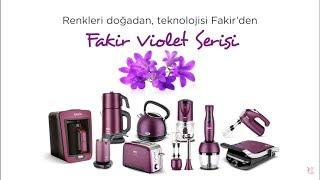 Gambar cover Fakir Violet Serisi