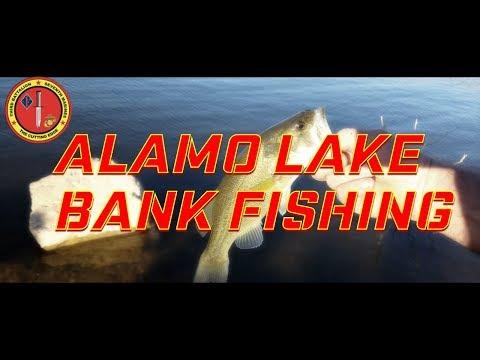 Bank Fishing for Bass at Alamo Lake Part 1