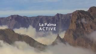 LaPalmaActive