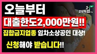 [오늘부터~대출한도2000만원!! 집합금지업종 임차소상…