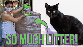 Donating a HUGE Amount of Cat Litter to Rescues through Cat's Pride Litter for Good!