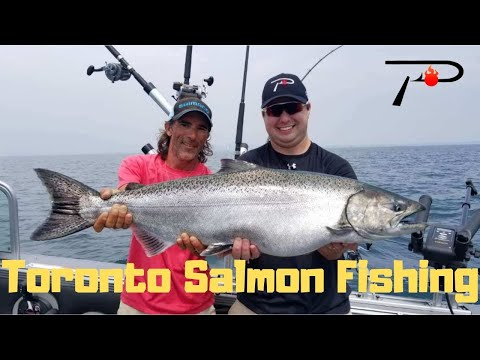 Toronto Salmon Fishing