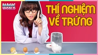 Thí nghiệm về trứng |  Amazing Science Experiments you can do with Eggs | THẾ GIỚI MA THUẬT