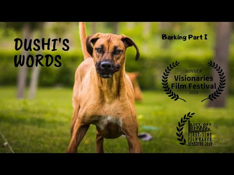 Dushi's Words - Barking part I