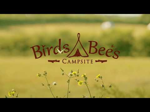 Birds And Bees Campsite