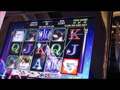 Reel 39 em in greatest catch slot machine bonus big win for Reel em in fishing slot machine