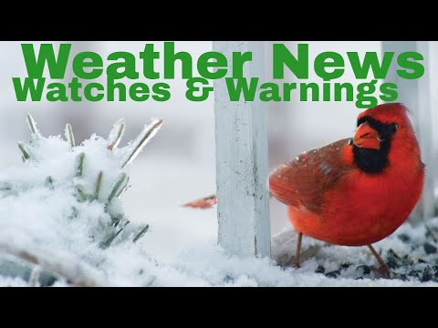 Weather News Weather Watches and Warning with J7409 For Tonight and Tomorrow