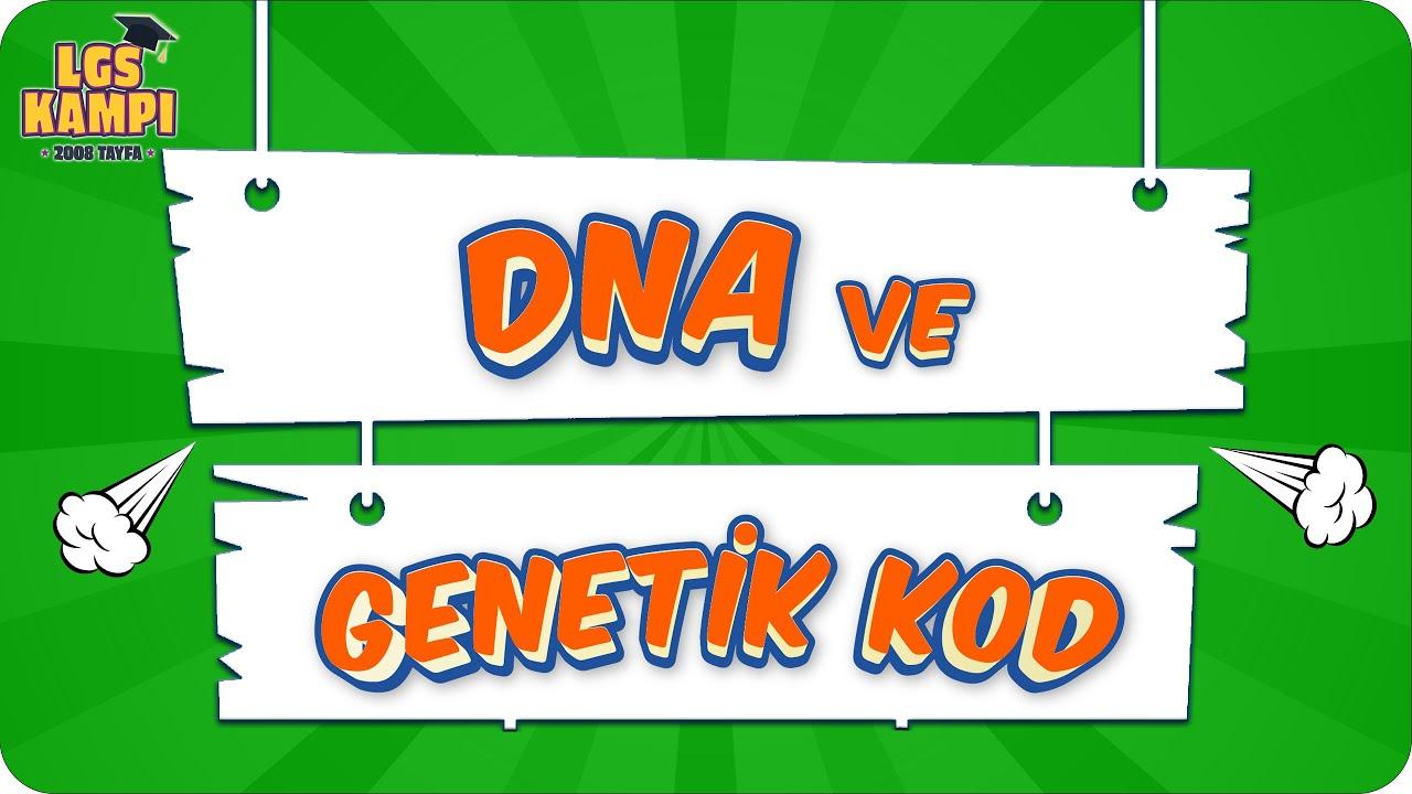 DNA VE GENETİK KOD   LGS Fen  #2022
