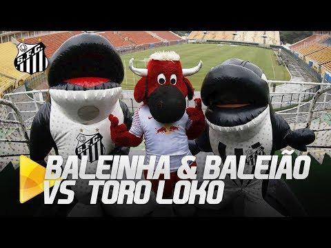 BALEINHA & BALEIÃO CAUSAM COM TORO LOKO!