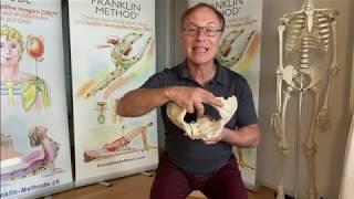 Dynamisches Training der Beckenmuskulatur