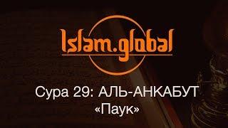 "Сура 29: ""Аль-Анкабут"" (Паук)"