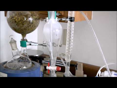 ESSENTIAL OIL DISTILLATION