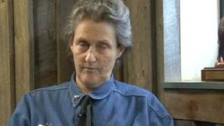Temple Grandin Quotes (Author of Thinking in Pictures)