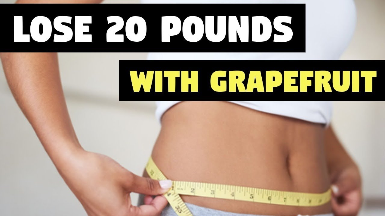 free rapid weight loss diet plans