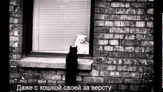 Песенка про чёрного кота