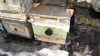 ремень для улья - удобные приспособления для пчеловодства