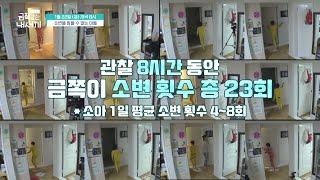 [선공개] 금쪽이 관찰 8시간동안 소변 횟수가 23번?…