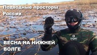 Весна на Нижней Волге Подводные просторы России