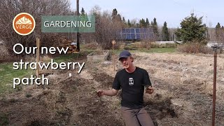 Planting Strawberries and Garden Resiliency with Rob & Ben