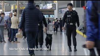 Cảnh sát Hàn Quốc truy lùng người Việt 'lẻn' qua cửa an ninh sân bay