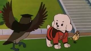 Симба младши на Световната купа, епизод 22 / Simba Junior World Cup - BG thumbnail