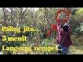 Pikat Jitu Burung Mantenan Kolibri Pikat Burung Mantenan Burung Cinta Kasih Mastering(.mp3 .mp4) Mp3 - Mp4 Download