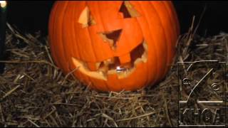 Halloween decorations go up in flames