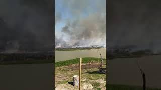 Ardió Saladero: las impactantes imágenes del la quema de pastizales en el paraíso costero