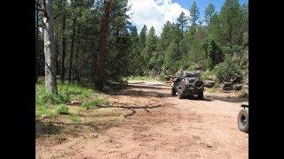 Pyeatt Draw Offroad Trail - Payson, Arizona
