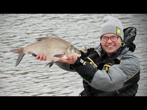 лещевая рыбалка фидером видео