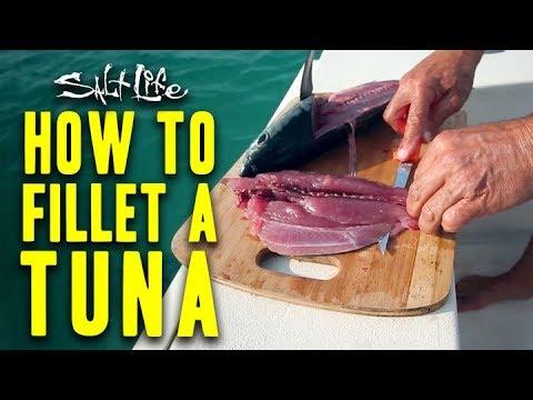 How to Filet a Tuna | Salt Life