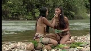 Ecuador.....la vida en estado puro! (in Spanish)