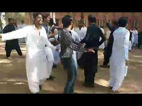 IBA sindh university sindhi  culture celebrated
