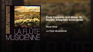 Flute Concerto in A Minor: III. Rondo: Allegretto scherzando
