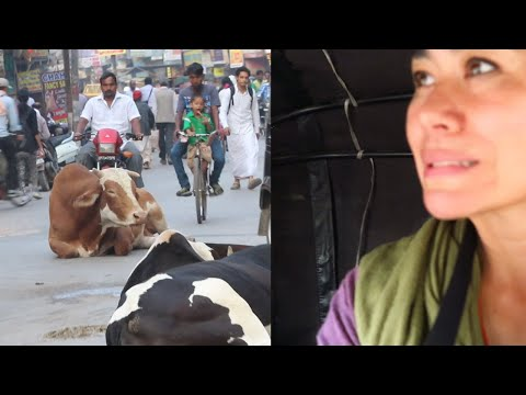 VARANASI CULTURE SHOCK & ARRIVAL TIPS | India Vlog