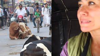 VARANASI CULTURE SHOCK & ARRIVAL TIPS  | India Vlog
