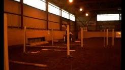 Äimäraution ratsastuscentrum (: