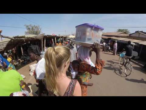 Togo Highlights