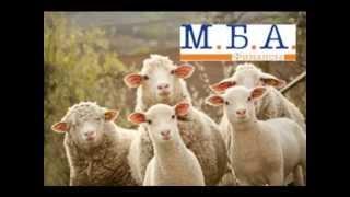 МБА Финансы 31 Разговор с заемщиком