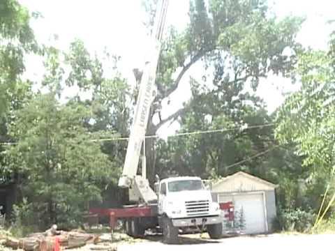 Huge Tree Removed By Crane In Salt Lake City Utah Atlas Service Cool Video A Must See