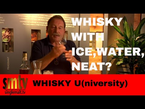 Should I Add Water or Ice to my Scotch Whisky - Whisky University