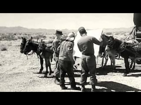 Exercise Desert Strike Wargames: United States Army & Air Force - 1964 - WDTVLIVE42