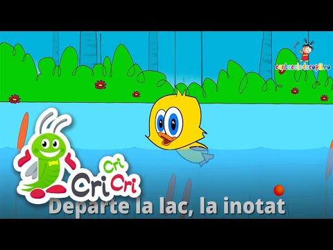 5 bobocei de rata (Five Little Ducks) – Karaoke | CriCriCri #cantecepentrucopii – Cantece pentru copii in limba romana