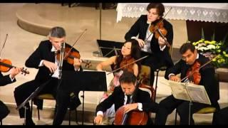 I Solisti di Zagreb & Marc Coppey, HAYDN C-dur  Finale: Allegro molto