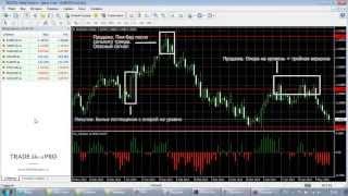 Форекс Индикатор Perpetual Profits