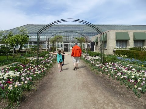 Chicago's Garfield Park Conservatory - Free Fun for All Ages