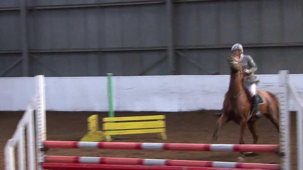 Markfield Equestrian Centre Showjumping 24th Nov 11 Mov