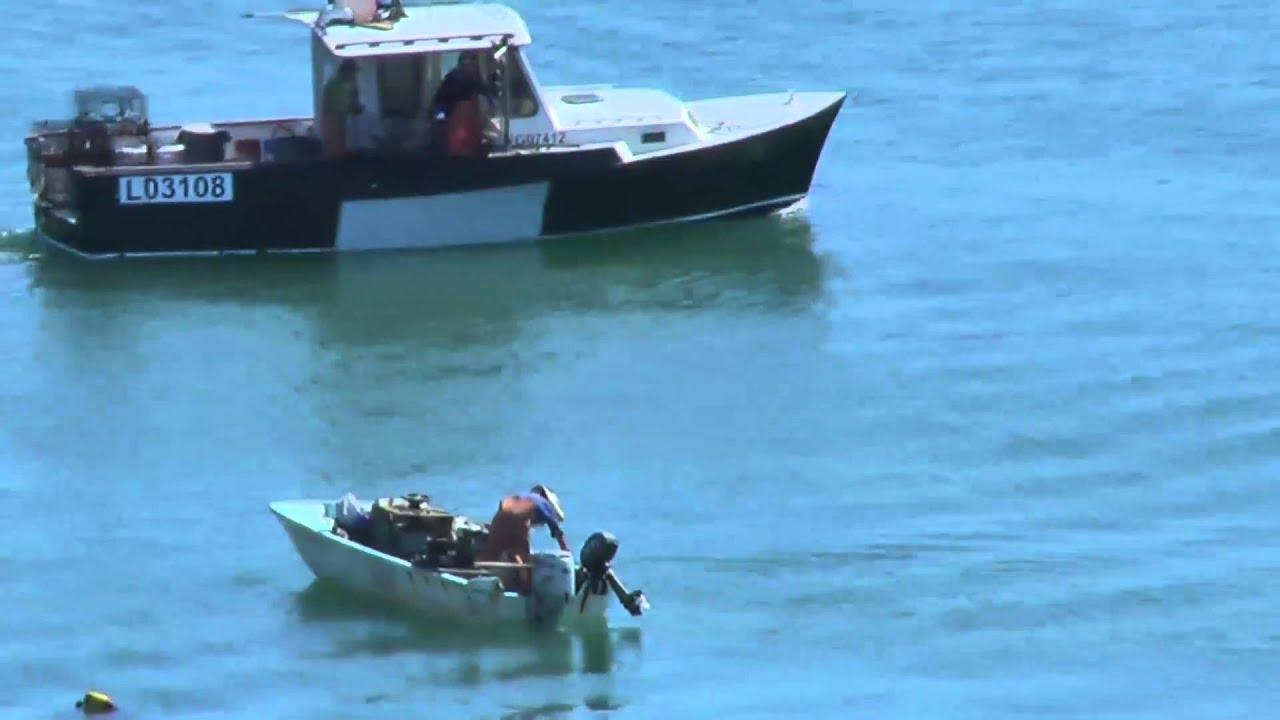 Commercial california spiny lobster fishing on the santa for Santa barbara fishing report